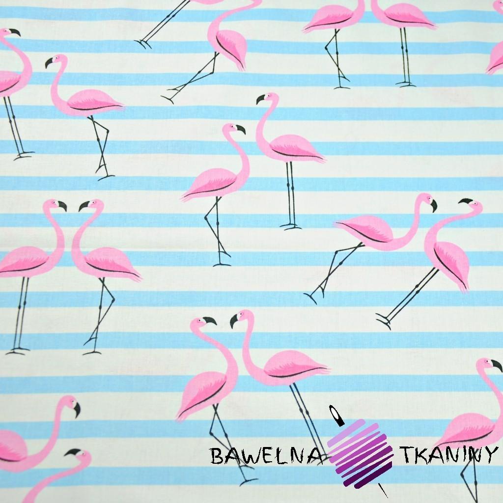 Bawełna flamingi z pasami błękitnymi na białym tle