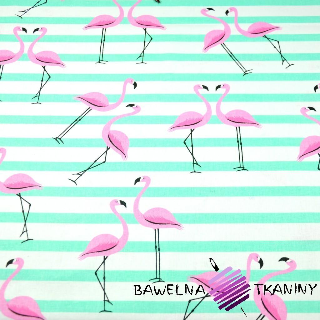 Bawełna flamingi z pasami miętowymi na białym tle