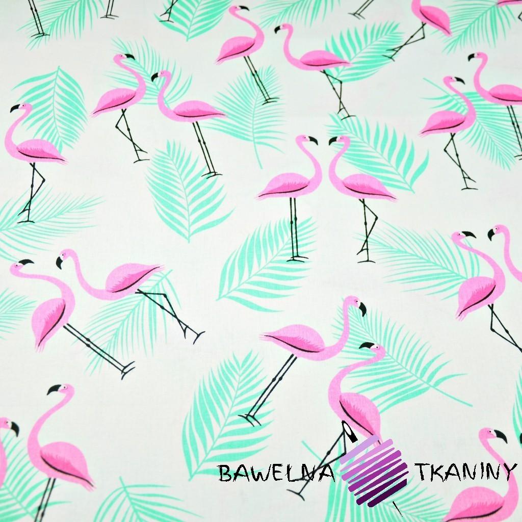Bawełna flamingi z listkami różowo miętowe na białym tle
