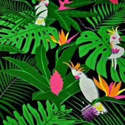 Bawełna papugi białe na zielonych liściach na czarnym tle