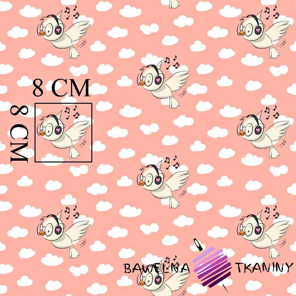 Bawełna ptaszki ze słuchawkami na różowym tle