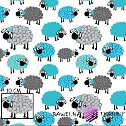 Bawełna owieczki w kropeczki niebiesko szare na białym tle