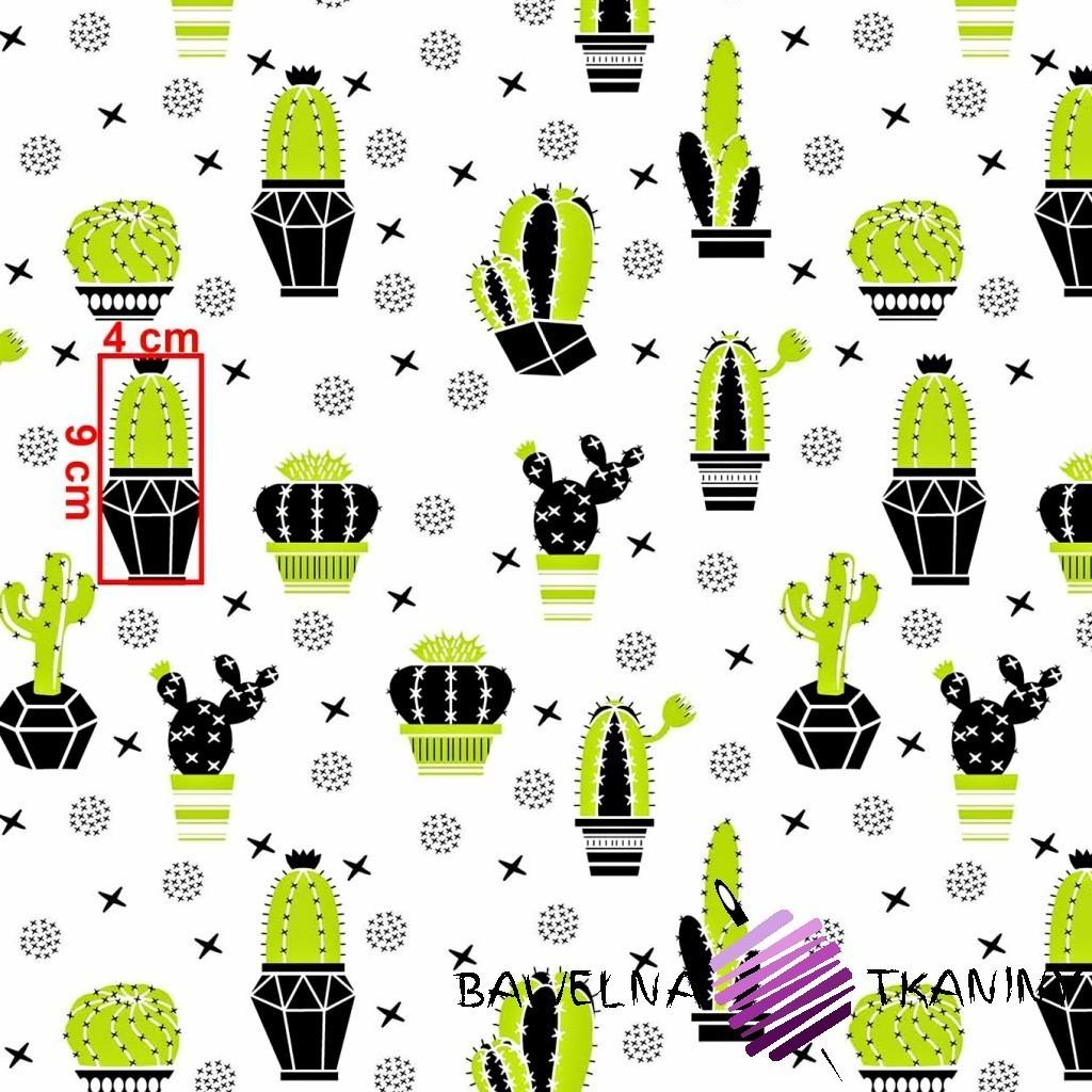 Bawełna kaktusy zielono czarne na białym tle