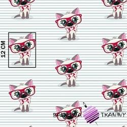 Bawełna koty w czerwonych okularach na pasiastym tle