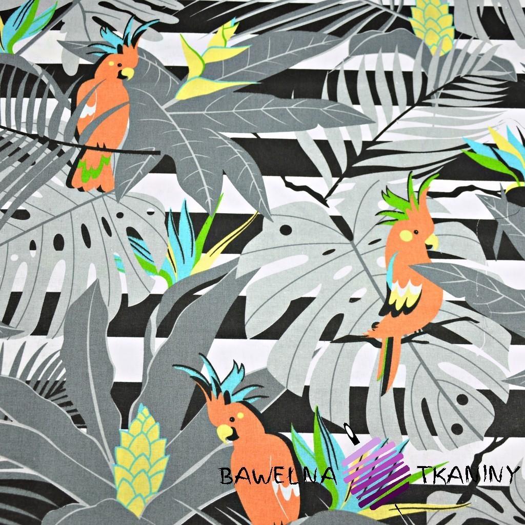 Bawełna papugi pomarańczowe na szarych liściach na pasach