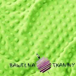 Minky Premium 265g/m2 - Jasmine green