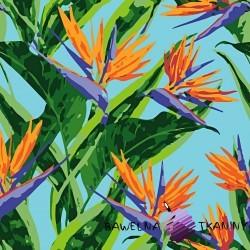 Bawełna kwiaty strelicje na niebieskim tle