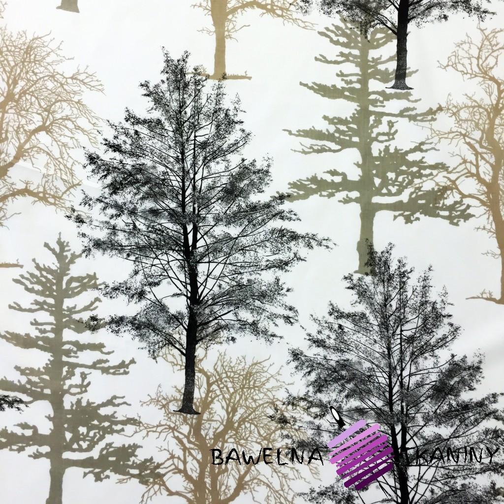 Bawełna drzewa brązowe na białym tle