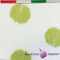 Canvas zasłonowy dmuchawce zielone