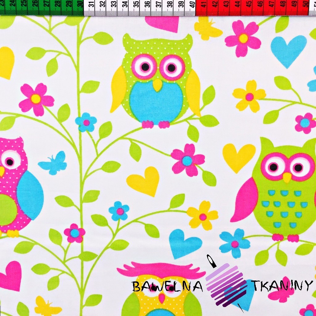 Cotton colorful big owls with leaves on white background