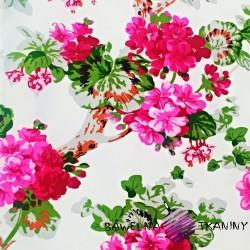 Bawełna kwiaty pelargonie różowe na białym tle