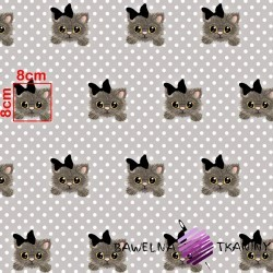 Cotton kitties on a gray background with white polka dots