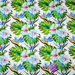 Bawełna liście monstera z niebieskimi kwiatami na białym tle