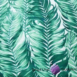 Flannel green palm leaves on white background