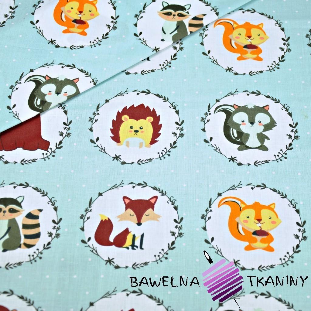 Bawełna zwierzątka w kołach na szarym tle