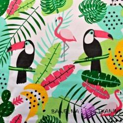 Bawełna tukany i flamingi kolorowe na białym tle