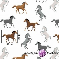 Cotton brown & gray horses on white background