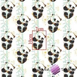 Bawełna złocona pandy z bambusem na białym tle