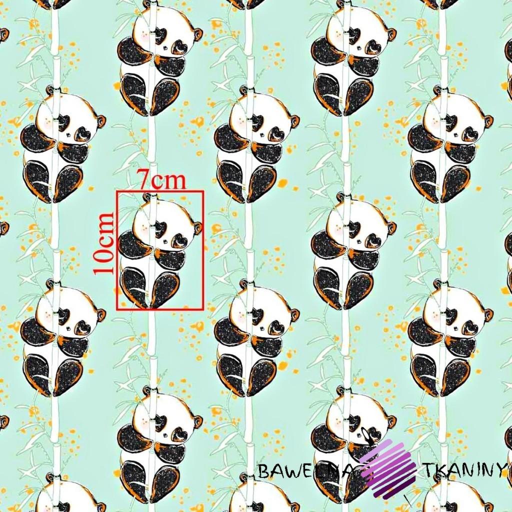 Bawełna złocona pandy z bambusem na miętowym tle