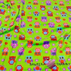 Soft fleeece colorful owls on a green background