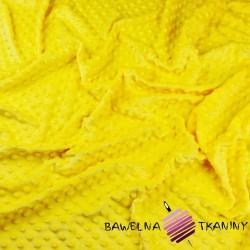 Minky thick 350 g/m2 light yellow