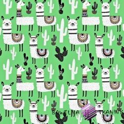 Bawełna alpaki z kaktusami na zielonym tle