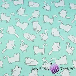 Bawełna kotki białe na miętowym tle