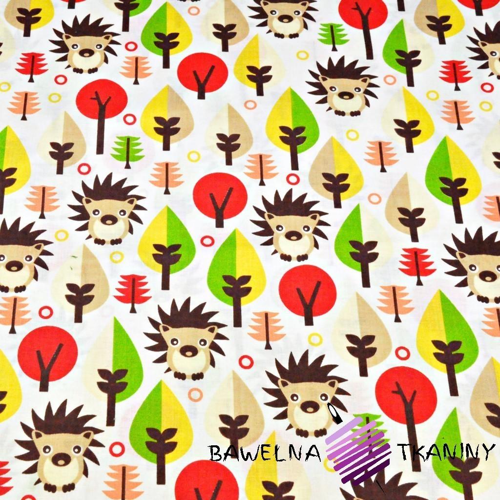 Bawełna jeżyki i czerwone drzewka na białym tle