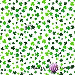 Cotton green clover on white background