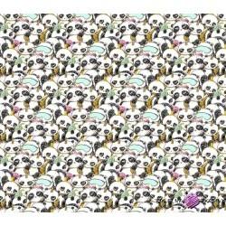 Bawełna złocona pandy śpiące na białym tle