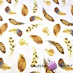 Bawełna piórka brązowa na białym tle