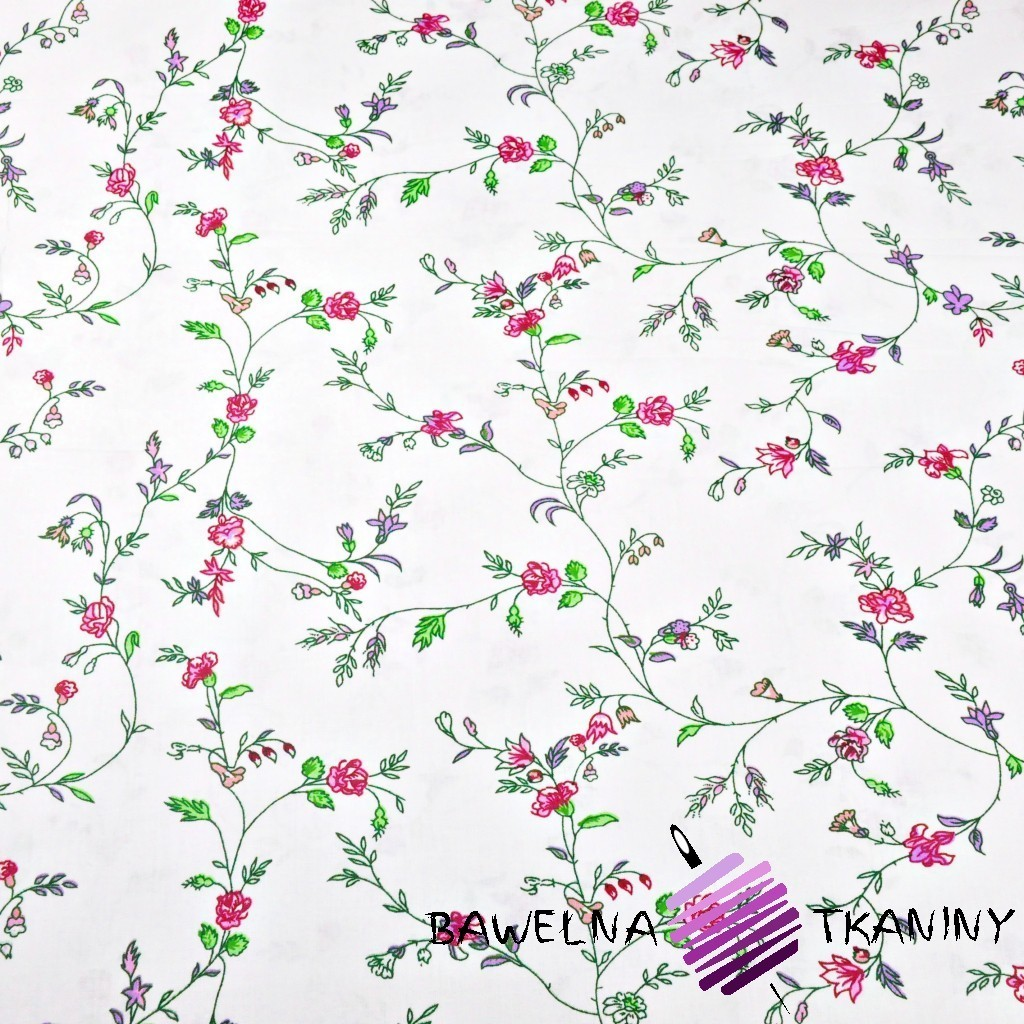 Bawełna kwiaty goździki różowe na białym tle