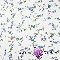 Bawełna kwiaty goździki niebieskie na białym tle