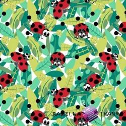 Bawełna biedronka czerwona z grochami czarnymi na białym tle