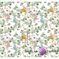 Cotton birds of paradise on white background