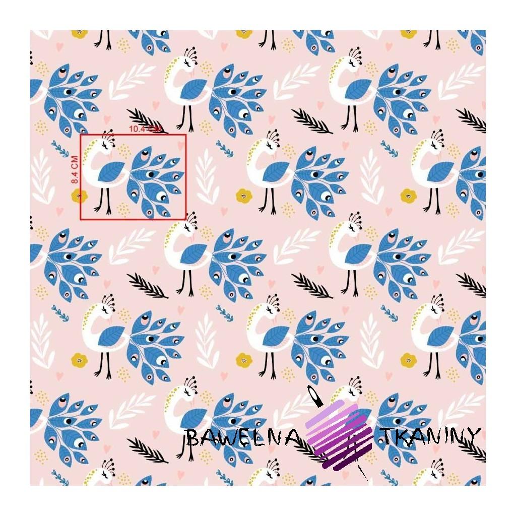 Bawełna pawie z niebieskim na różowym tle