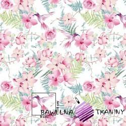 Bawełna kwiaty różowe z kolibrami na białym tle