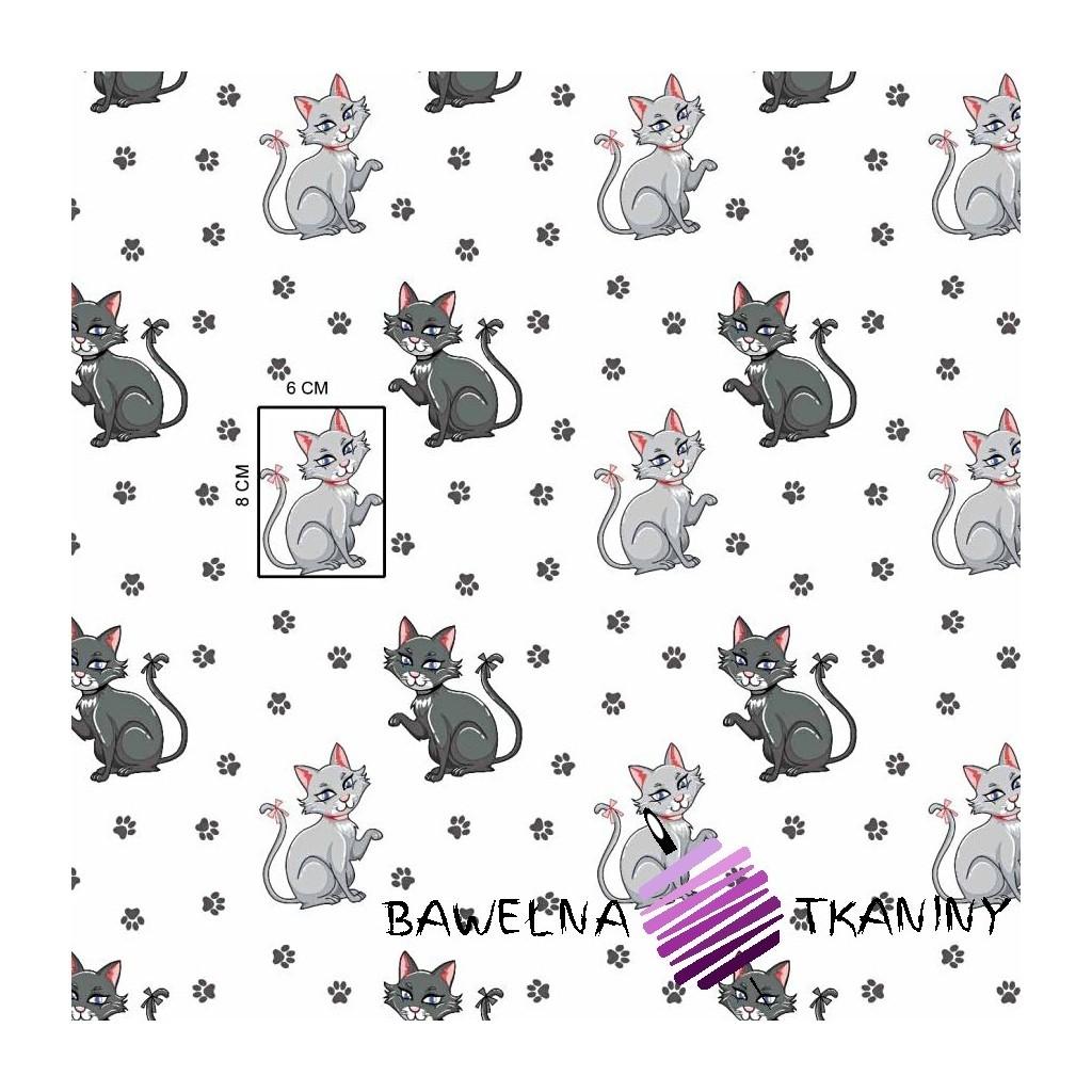 Bawełna kotki z łapkami na szarym tle