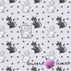 Cotton kitties with paws on a light gray background
