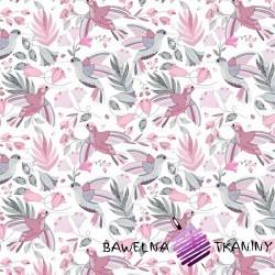 Bawełna kolibry szaro różowe na białym tle