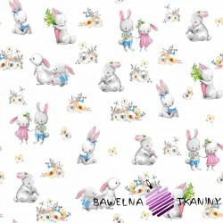 Cotton overs of rabbits on a white background