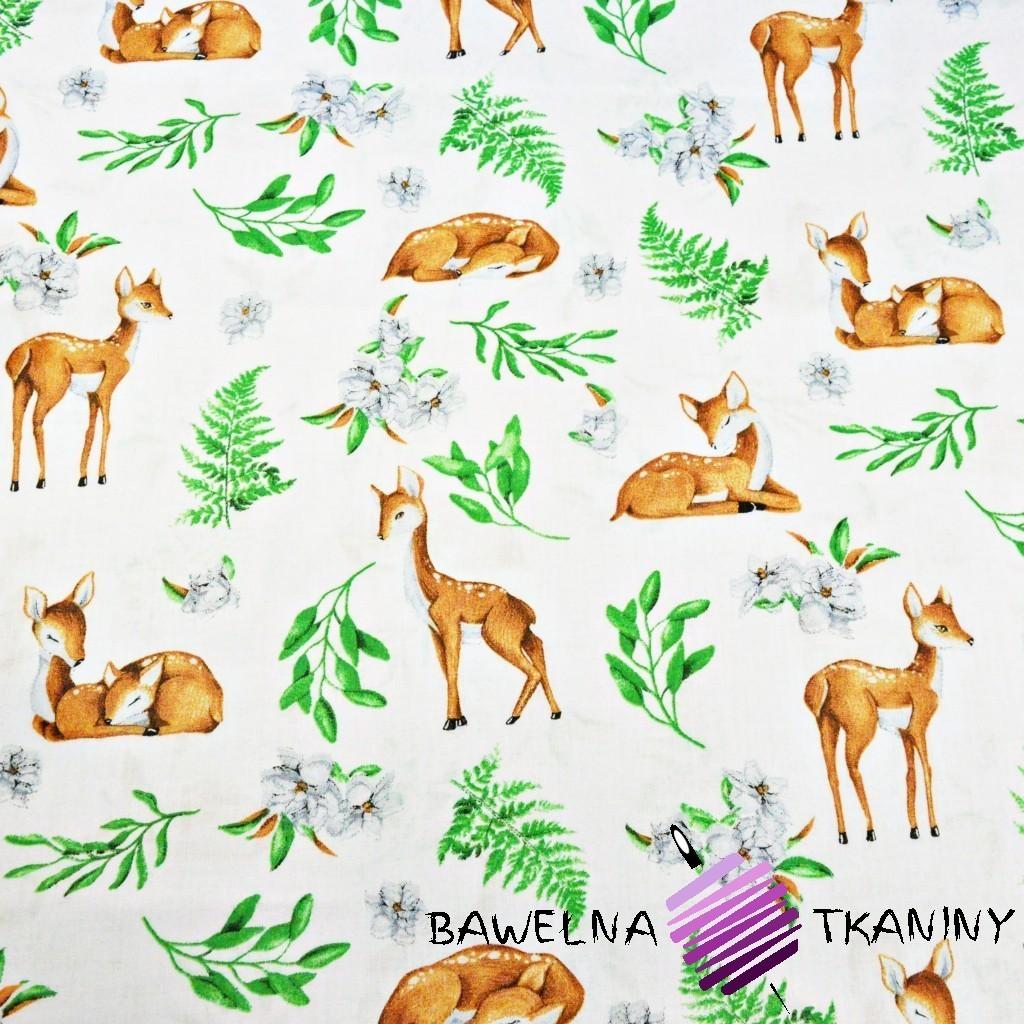 Bawełna sarenki z listkami na białym tle