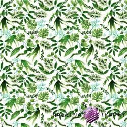 Bawełna liście palmowe zielone na białym tle