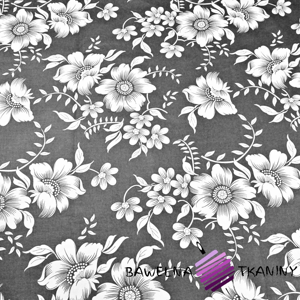 Cotton white flowers on a gray background