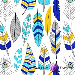 Cotton blue & yellow Feather on white background