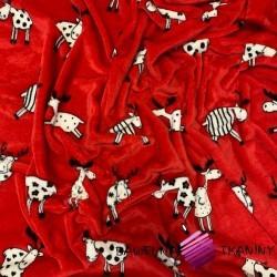 Polar plus łosie na czerwonym tle