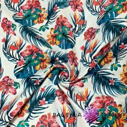 Bawełna kwiaty hibiskus na niebieskich liściach na białym tle