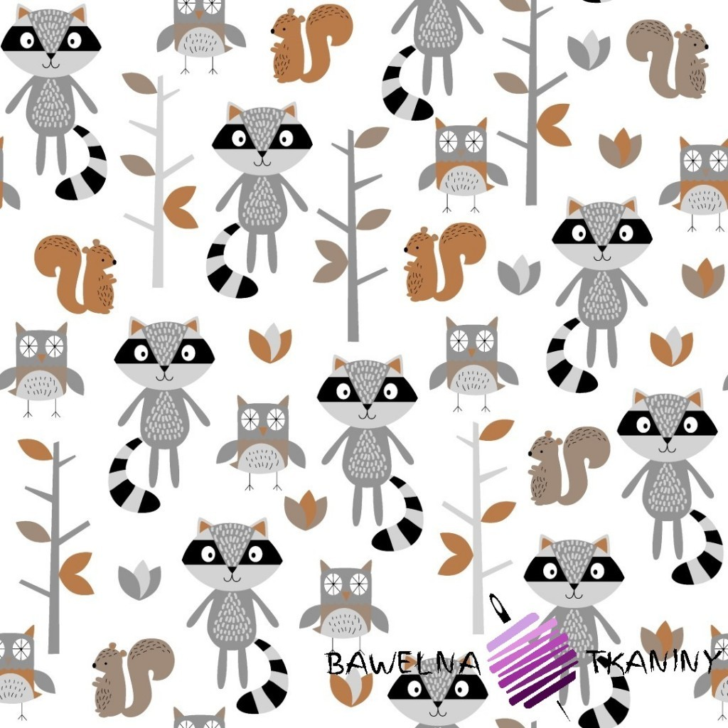 Cotton gray & beige raccoons in forest on white background