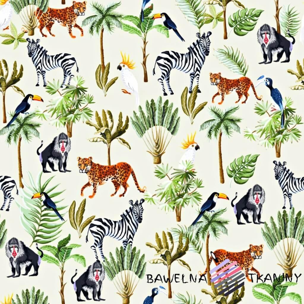 Dzianina Jersey druk cyfrowy zwierzęta afrykańskie na ecru tle