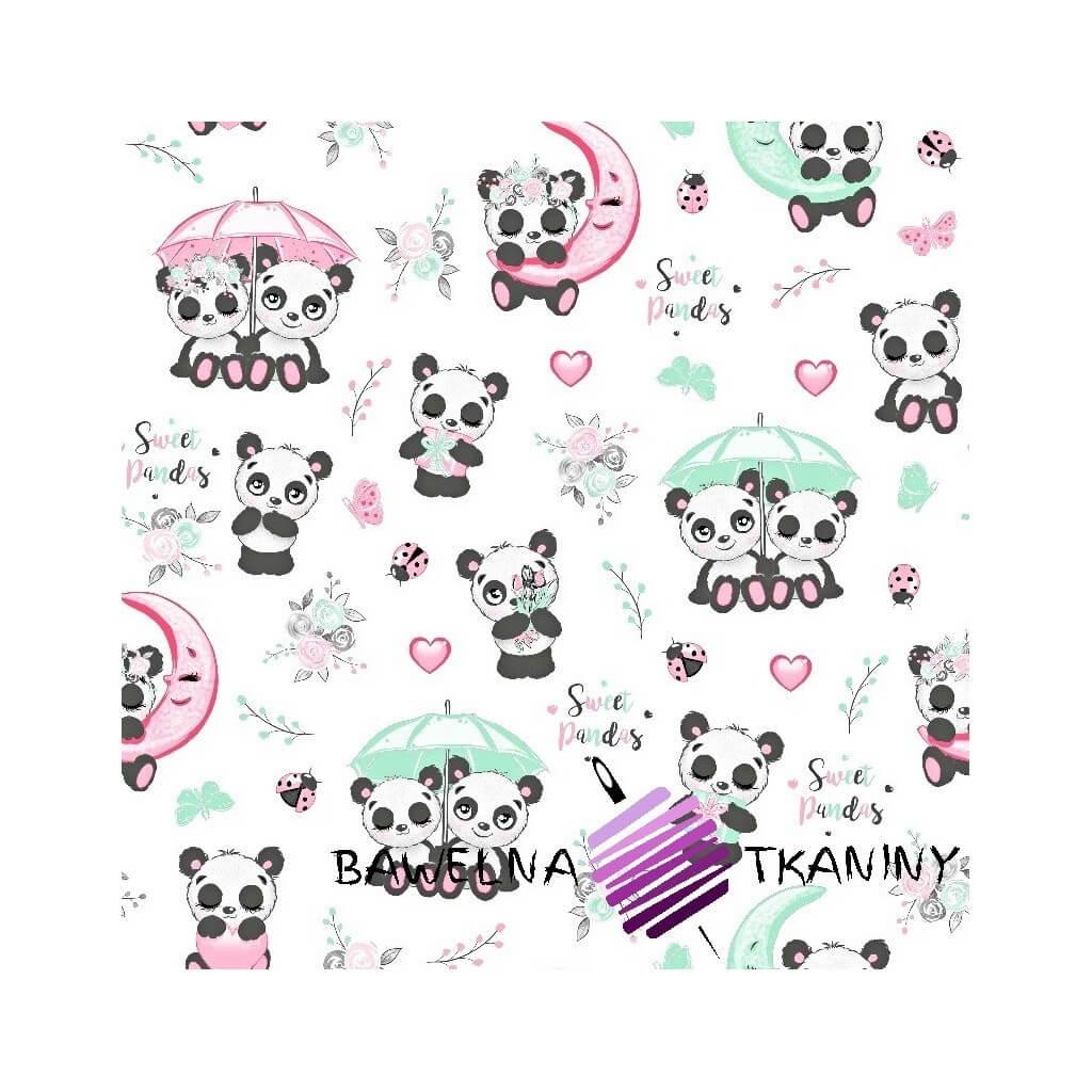 Cotton pandas with umbrella on a white background